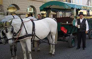 Hose Carriage Munich