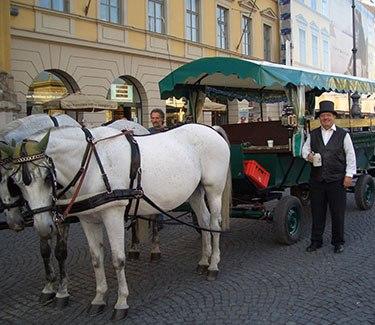 Kutschfahrt München